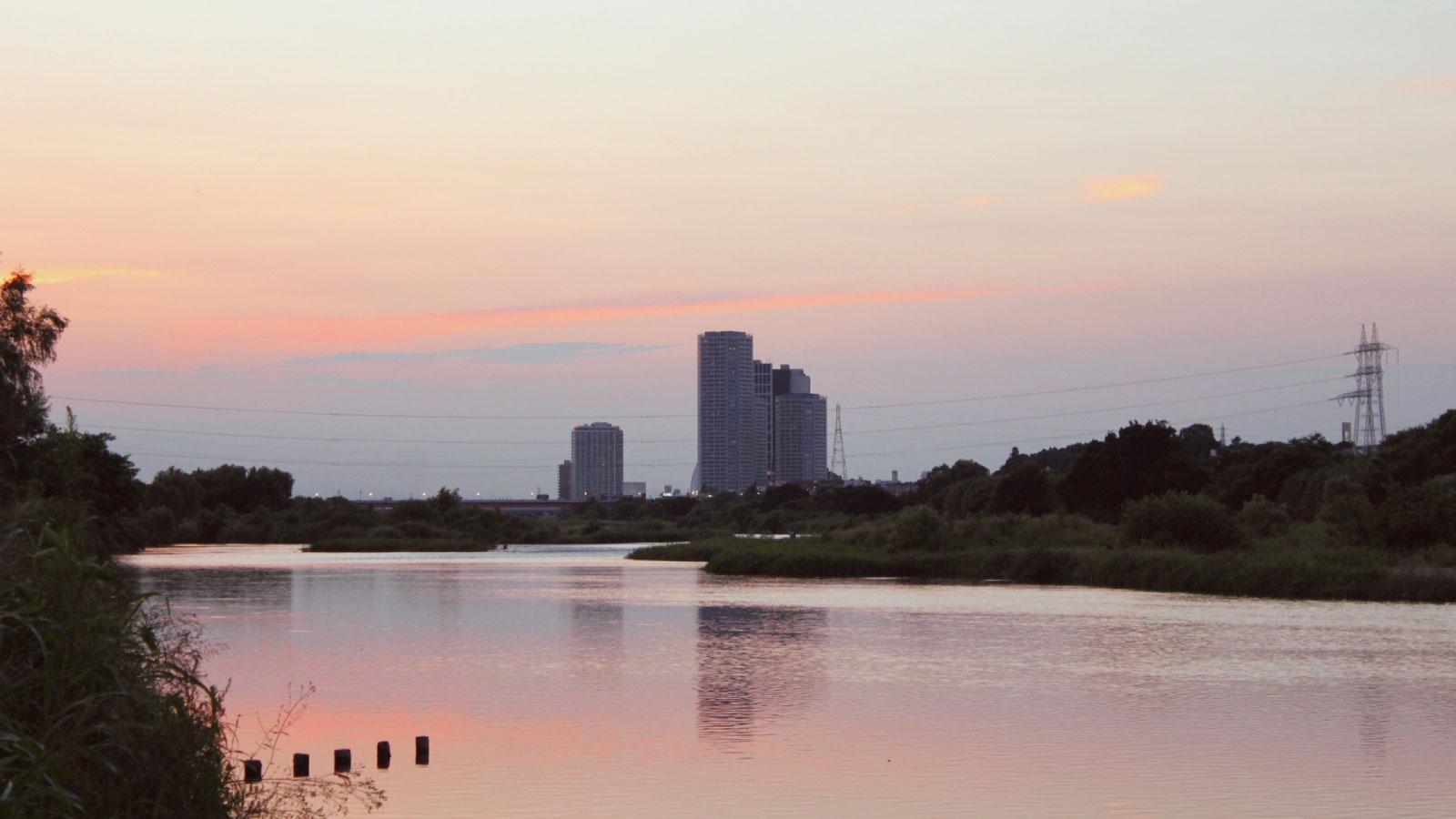 多摩川の畔